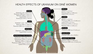 Health Effects of Uranium. Radiation Monitoring Project.