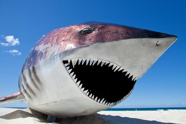 White Death, Glenn Sanders - Swell Sculpture Festival, Pacific Parade, Currumbin Beach, Gold Coast, Queensland, Australia. Photos by Des Thureson:  http://disci.smugmug.com.