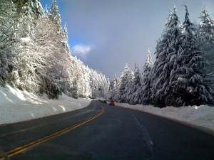 Mount Seymour Road