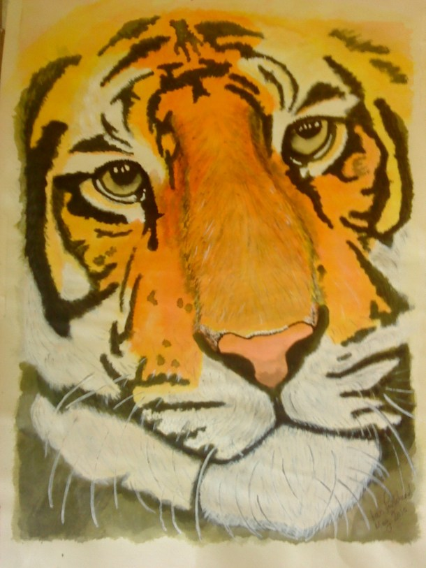 Tiger - drawing ink on paper