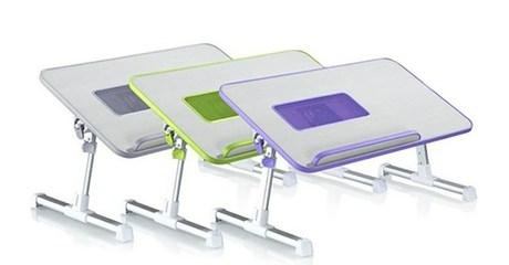 Ergonomic Laptop/Breakfast Desk