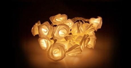 String of 20 LED Roses