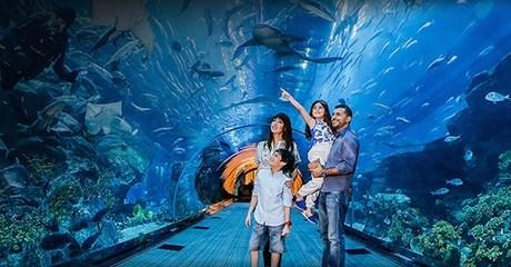 Underwater Zoo Entry & Dubai Tour