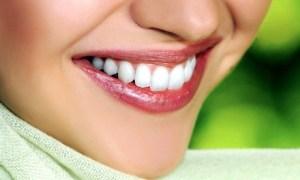 Dental Consultation with X-Ray