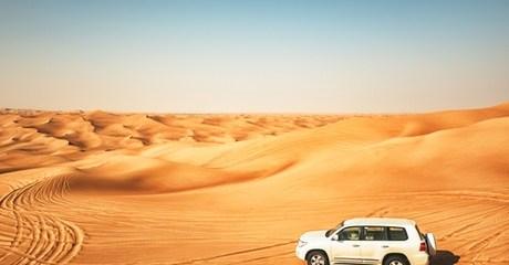 VIP Desert Safari in a 4x4
