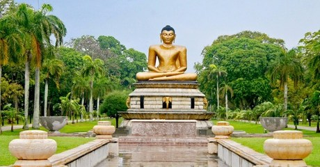 ✈ Sri Lanka: 3-Night Tour with Flights