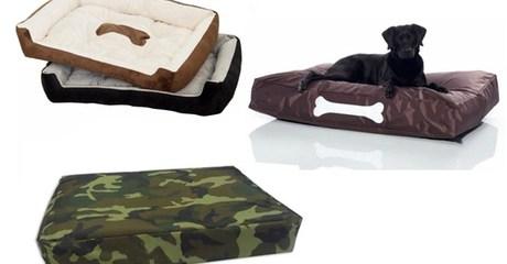 Pet Bed or Bean Bag