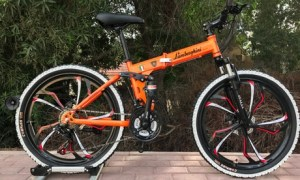 Foldable 24-Inch Bike