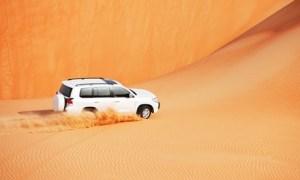 Desert Safari and Barbecue