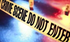 Criminology Online Course