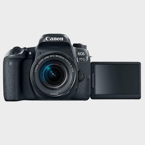 Canon DSLR Camera EOS-77D + 18-55mm IS Black Price in Qatar Lulu