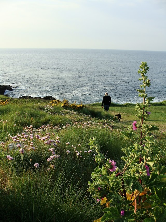 Coastal path leading to the cliffs, Discover Groix