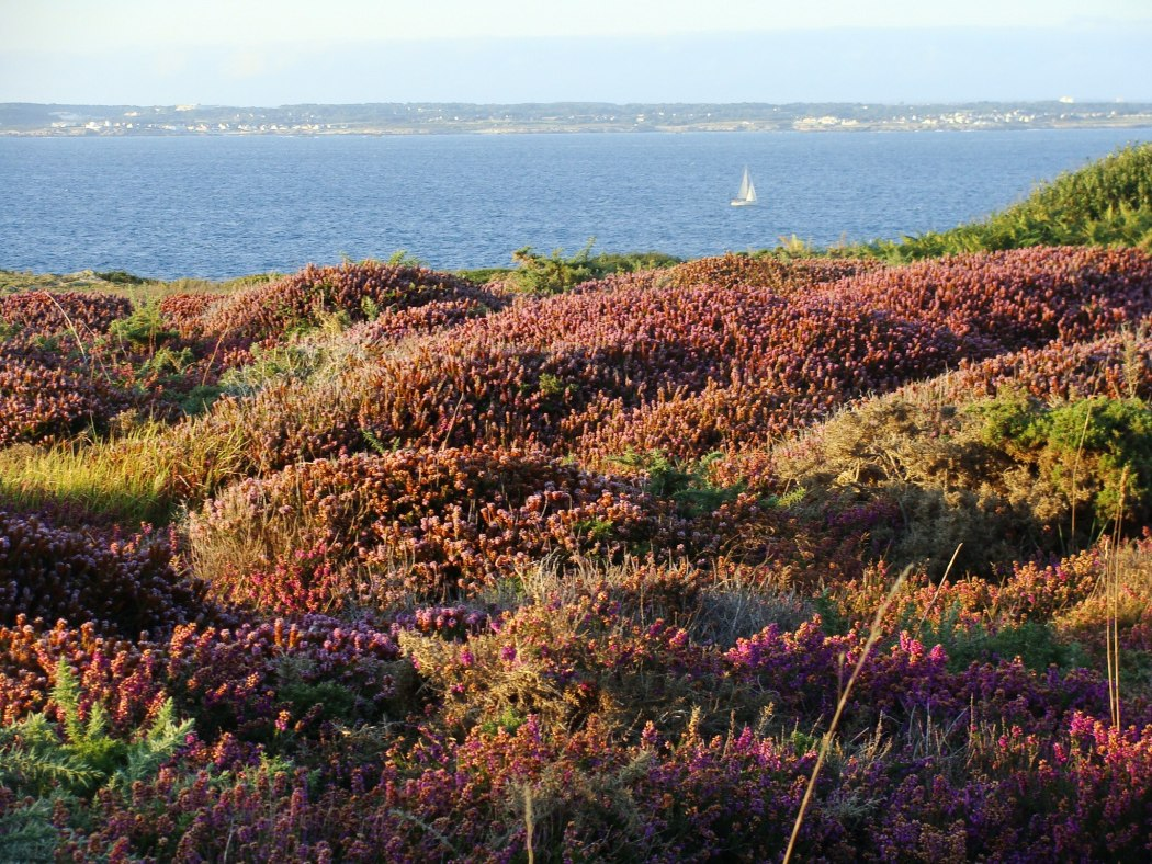 Sunset colors at Beg Melen on the island of Groix