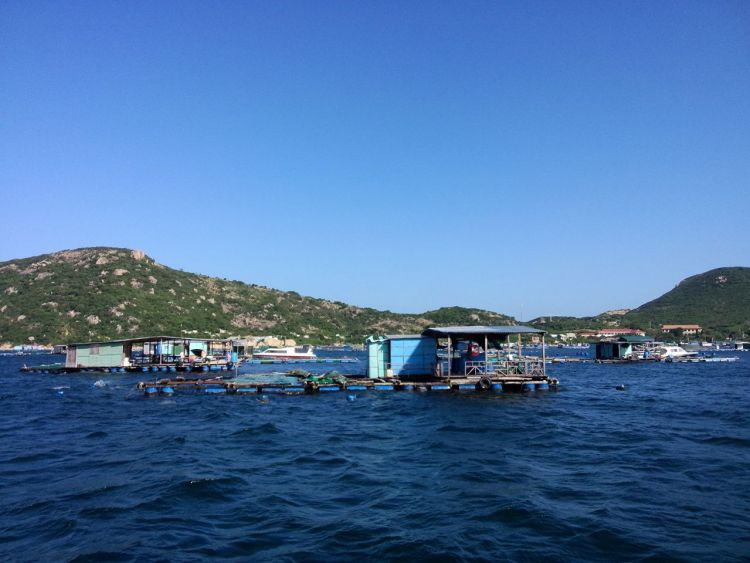 fish-farm-binh-ba-island-cam-ranh-khanh-hoa-vietnam