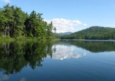 Whitton Pond