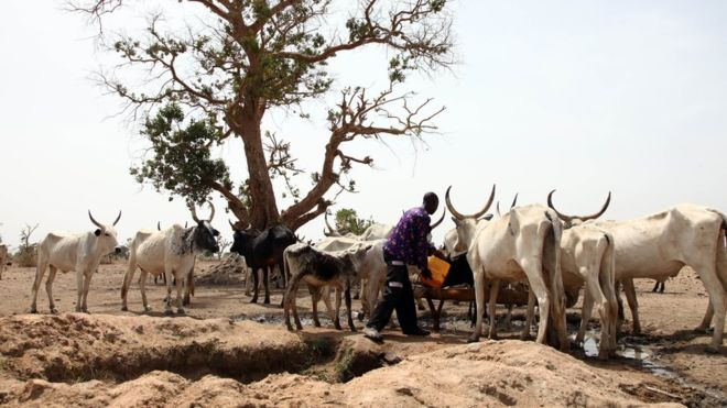 Herdsmen and farmers clashes have reduces many communities to rubble in Nigeria