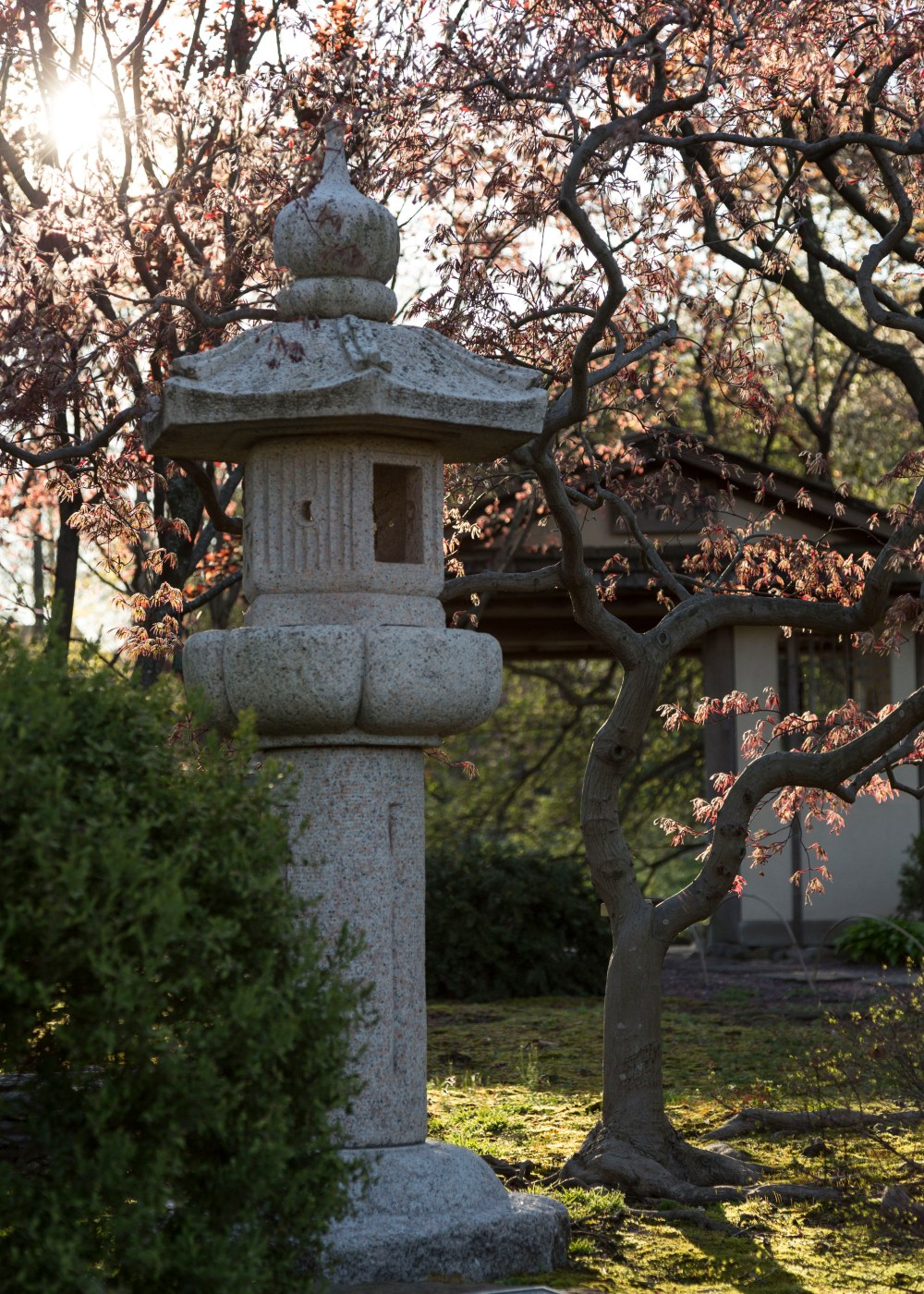 Edogata Lantern