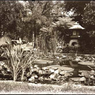 One of the Yukimi Lanterns at the home of Garden trustee Leonard Matthews in 1910.