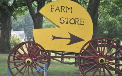 Central Jersey Tastings: Cheeses of Bobolink Dairy, Cherry Grove Farm
