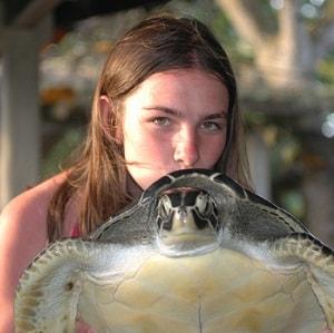 volunteer with costa rica sea turtles