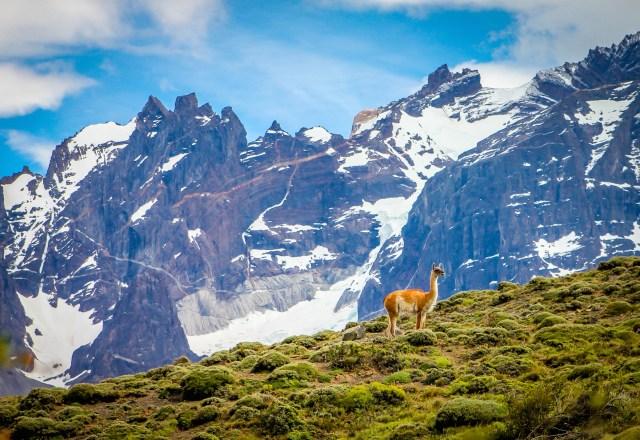 Top 10 National Parks- Torres del Paine National Park
