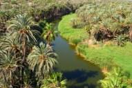 the mulege river