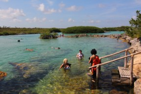 north end of akumal where fresh water from the yucatan blends with the caribean