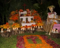 day of the dead altar and offerings
