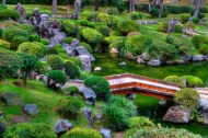 rocks are also common elements found in most types of japanese gardens