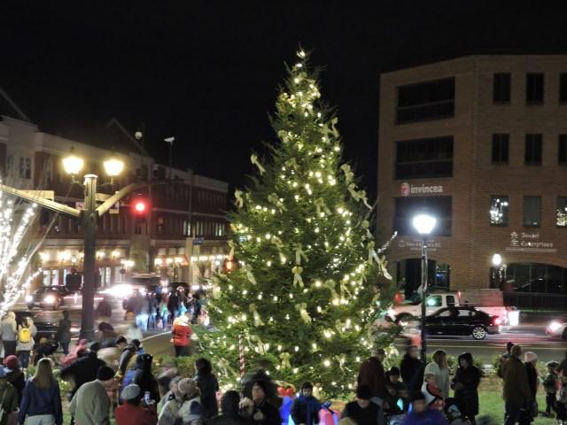 christmas tree in fairfax city