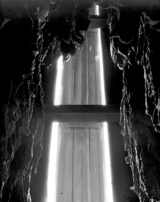 Untitled, No. 5: Interior, Millersville, Pennsylvania