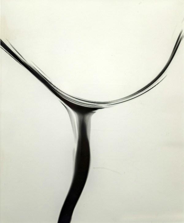 Untitled silverprint
