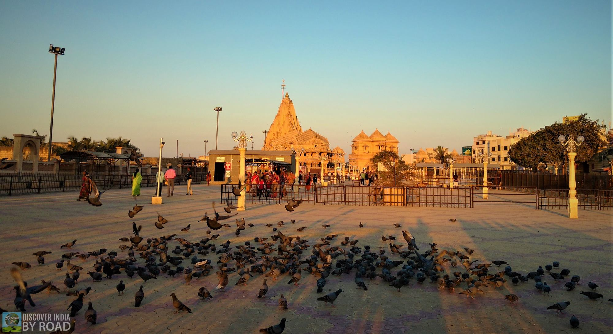 Morning at Somnath Temple
