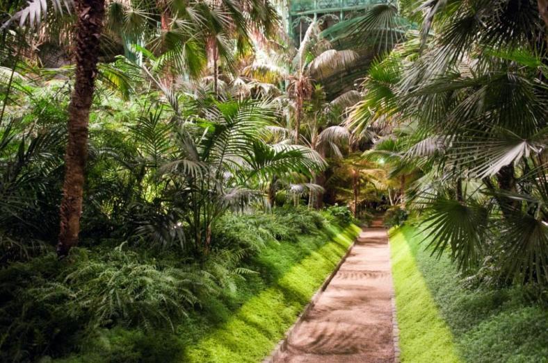 Royal Greenhouse Laeken