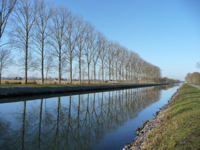 The clear winter's morning light certainly makes for a pretty picture along the canal.