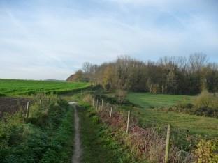 fields near Meldert