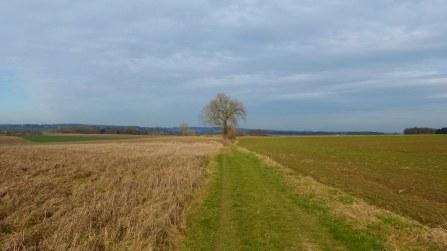 The Duisburg Plateau
