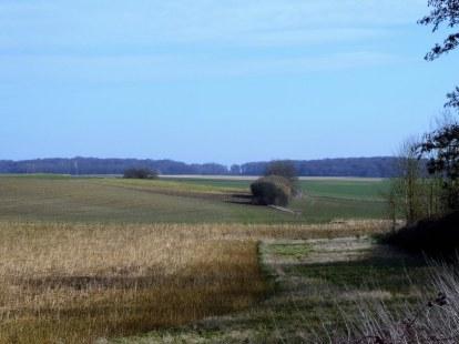 Walking from Tervuren to Bertem