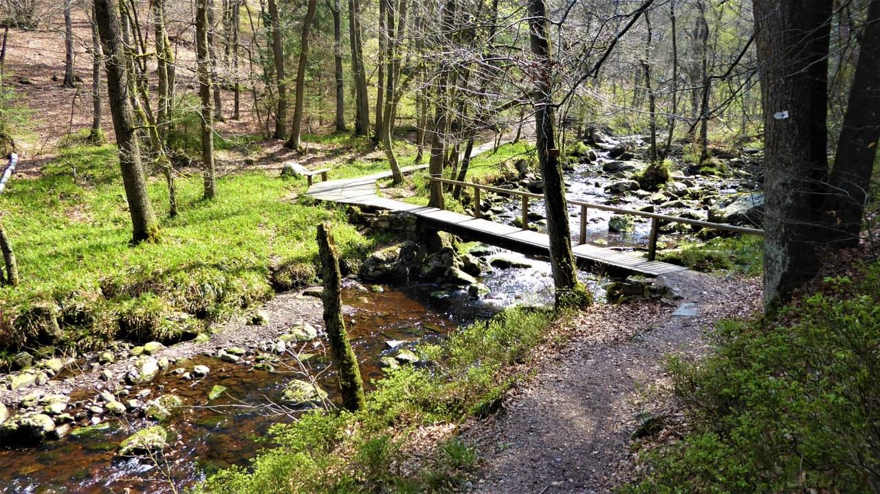 Hoegne-valley (1)