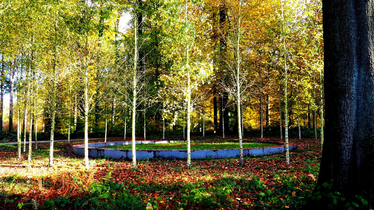 The Sonian Forest walk takes in two memorials