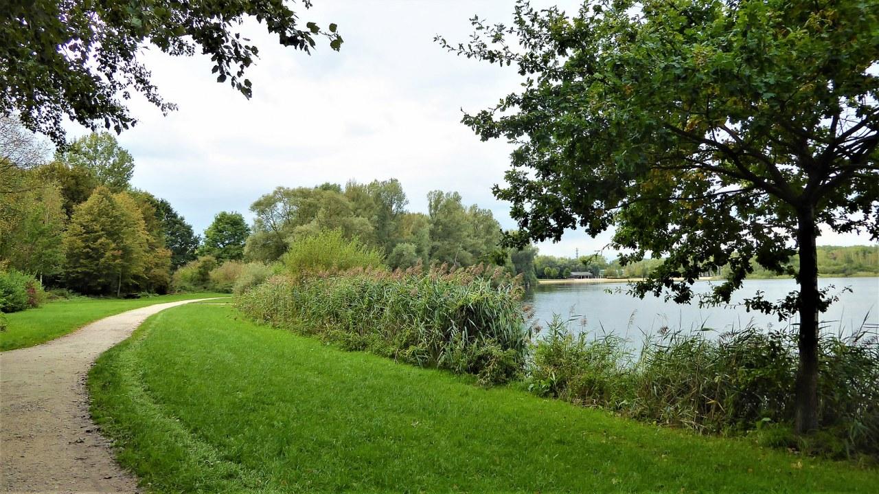 Child-friendly walks in Belgium the Rotselaar Lake