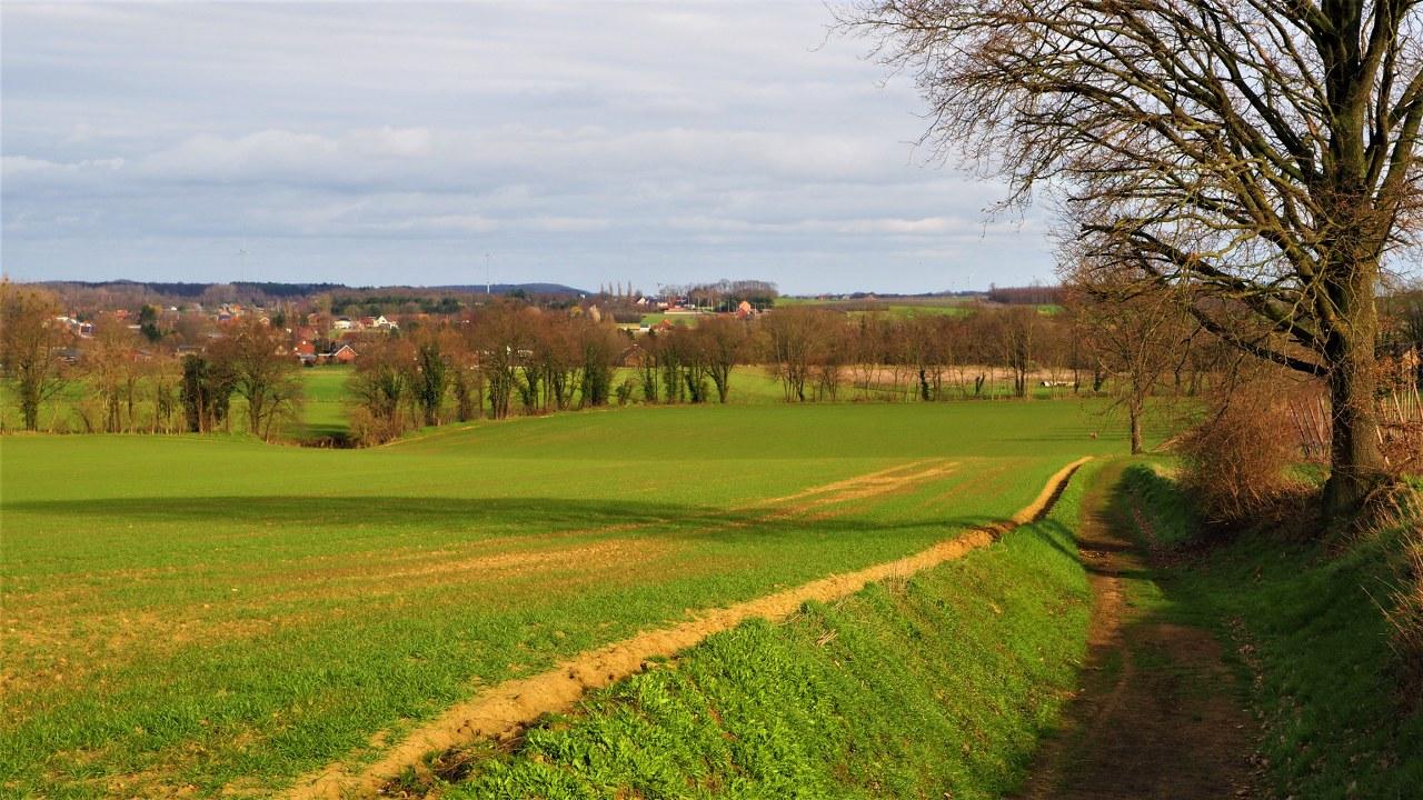 Walking around Tielt-Winge in Flemish Brabant, Belgium