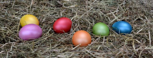 Family Easter Traditions: Easter Egg Hunts
