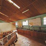 John Wilson Karamoja Museum Treasures of Africa Kitale Moroto