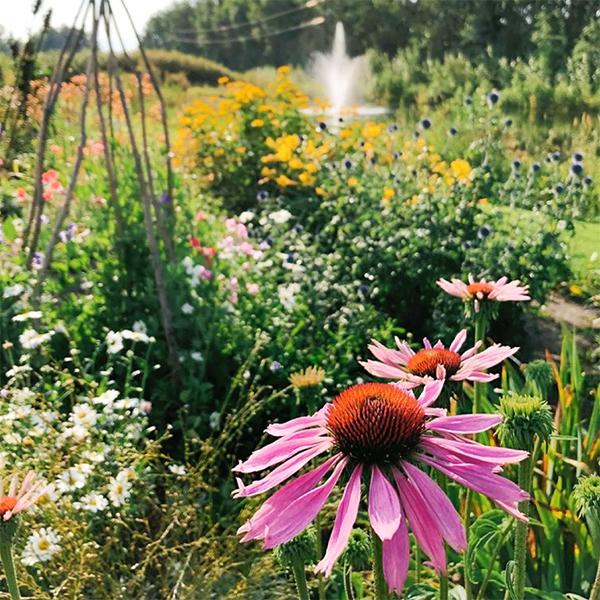 Farm Fresh Florals