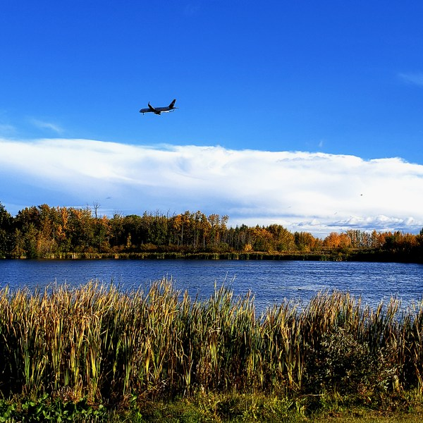 Autumn Hikes Around Telford Lake (Photo Credits: Janet Stamper | IG - janet.stamper)