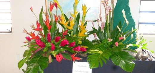 National Trust Flower Show