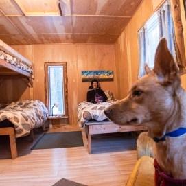 Rent The Eugene: Sleeps 4; $89/night