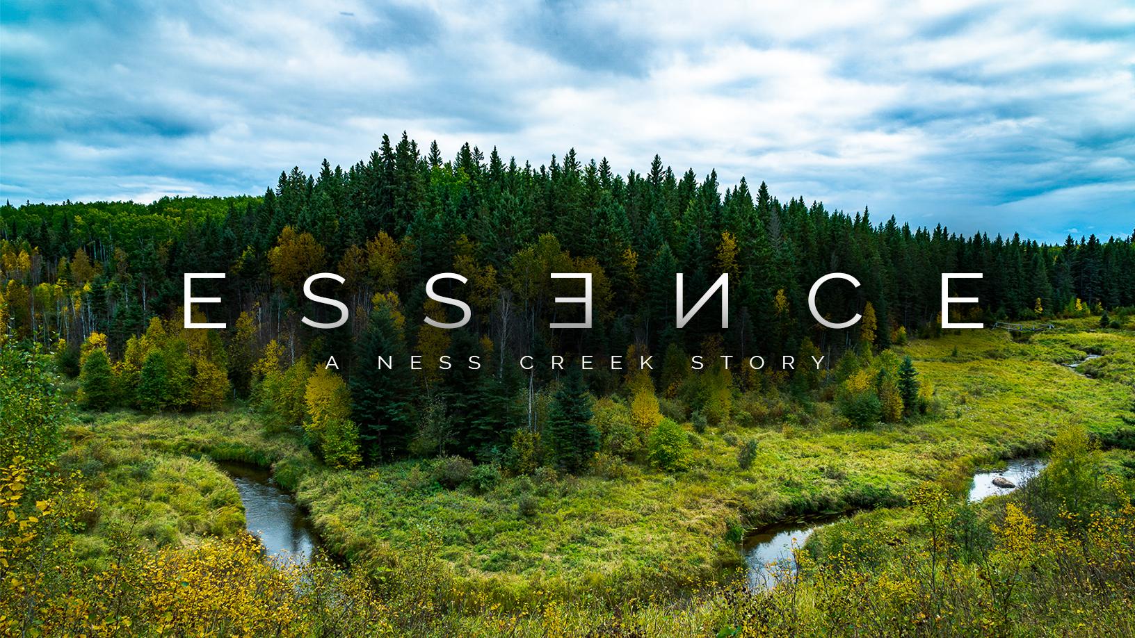 essence documentary nathan puffalt ness creek