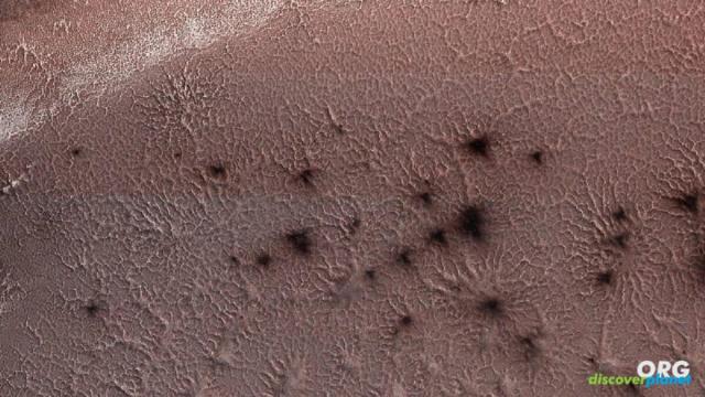 """Martian """"spider"""" or """"araneiforms"""" on Mars"""
